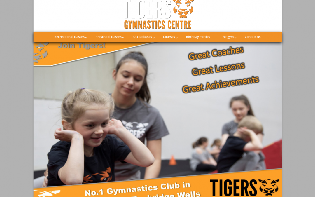 Tigers Gymnastic